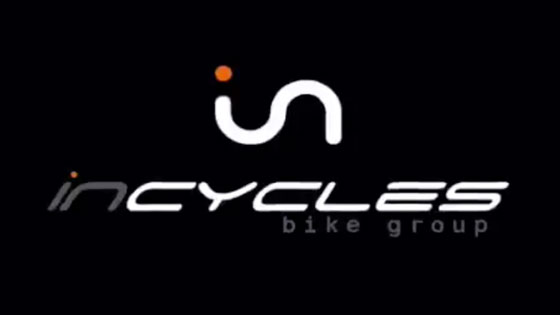 Incycles in the 1000 best SMEs